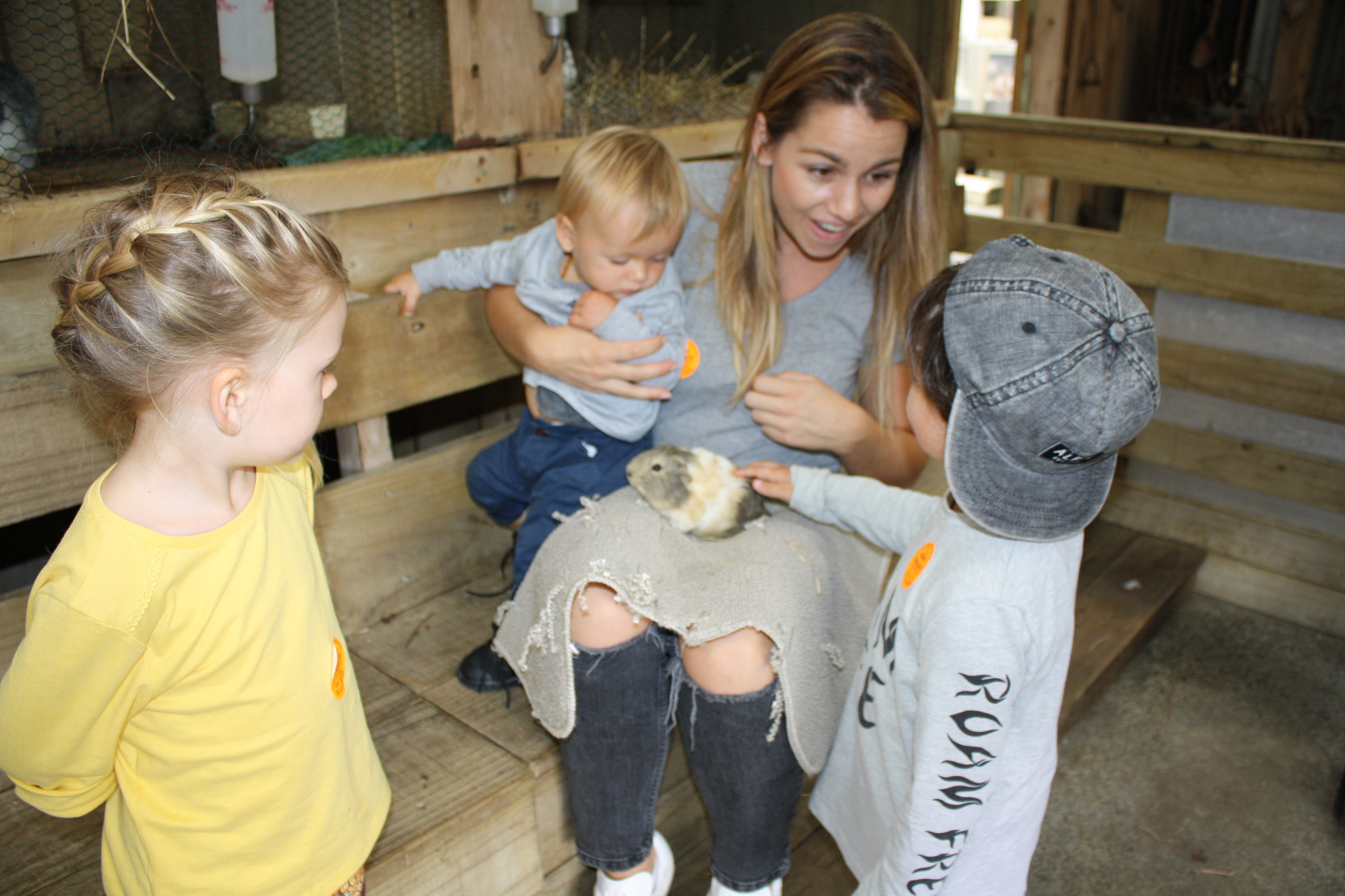 Kids Babies and Farm Animals, Petting a guinea pig at Kiwi Valley Farm in Auckland, New Zealand