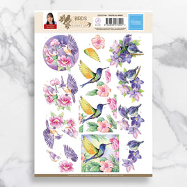 3D Diecut Decoupage A4 Sheet - Tropical Birds - Jeanine's Art - SB10318
