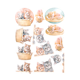 3D Diecut Decoupage Pushout Kit - Amy Design - Cats World - Kittens