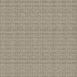 Cardstock - 12x12 - Silver Star (216gsm)