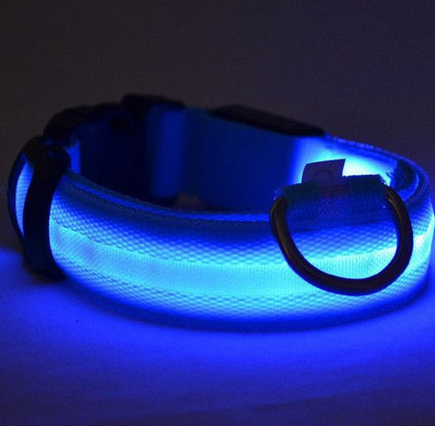 Collar LED nocturno