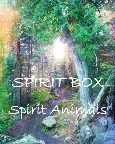 Spirit Box - Spirit Animals
