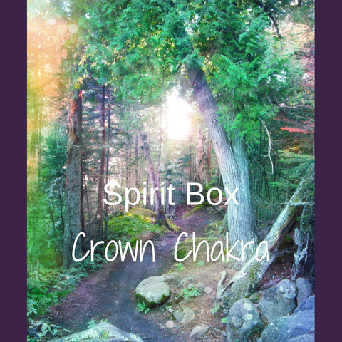 Past Spirit Box™ - Crown Chakra
