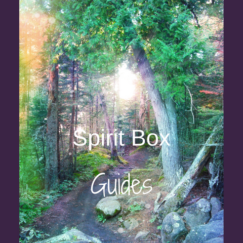Past Spirit Box™ - Guides