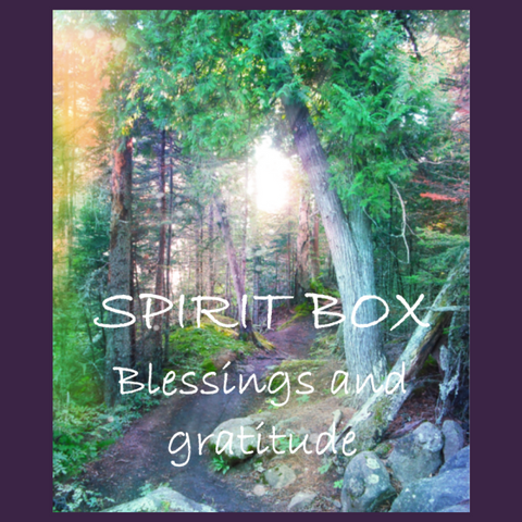 Past Spirit Box® - Blessings & Gratitude