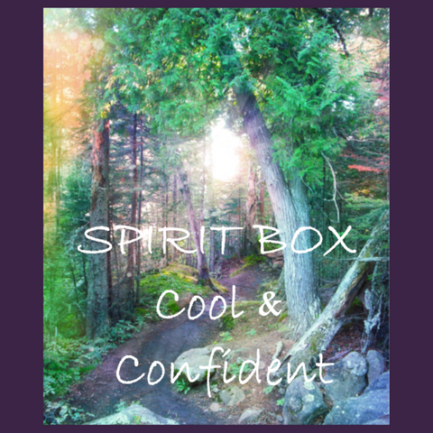 Past Spirit Box™ - Cool & Confident