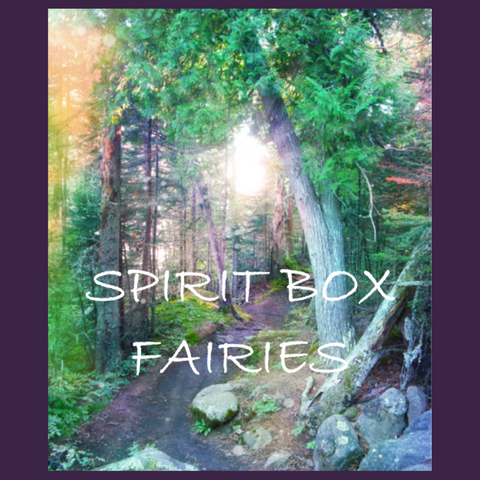 Past Spirit Box™ - Fairies