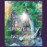 Spirit Box™ - Intuition