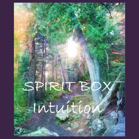 Past Spirit Box™ - Intuition