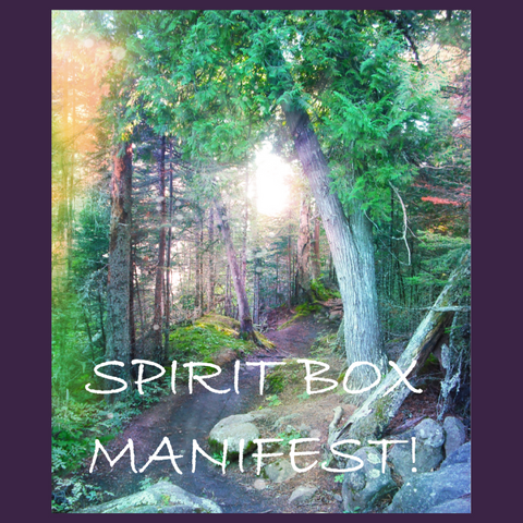 Past Spirit Box - Manifest!