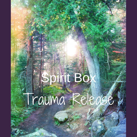 Past Spirit Box™ - Trauma Release