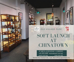 News Letter - Soft Launch new retail outlet at Chinatown