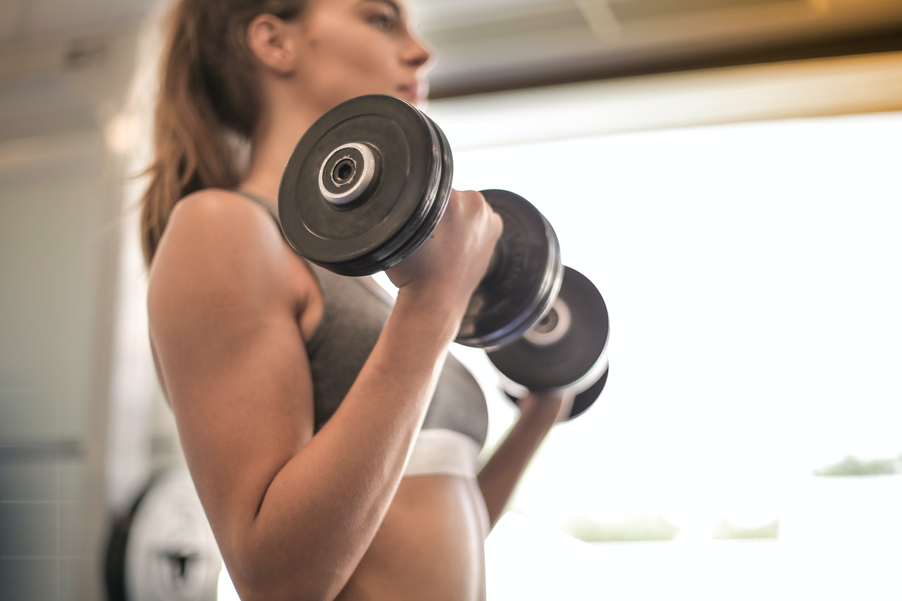Muscle Gain - Fitness Factor