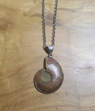 Necklace Pendant Fossil