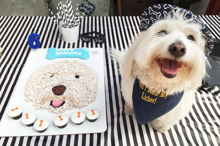 Celebrate Your Dog's Birthday with a Dog Party