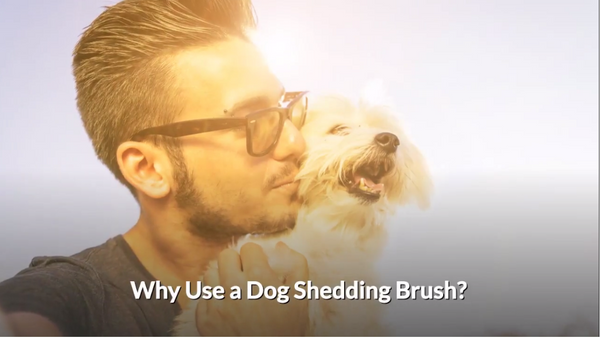 Best Pet Grooming Brush - Deshedding Tool For Dogs