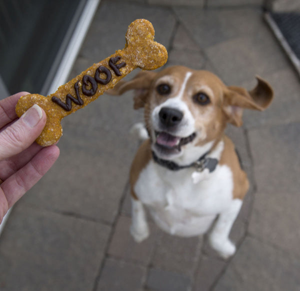 Delight Your Dog With A Natural Dog Treat