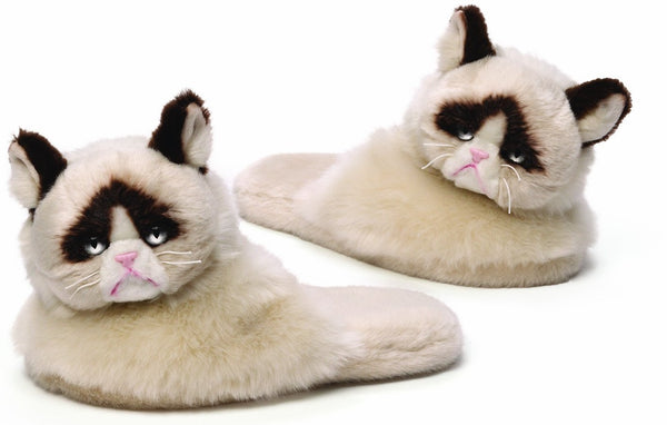 Great Gifts For Cat Lovers