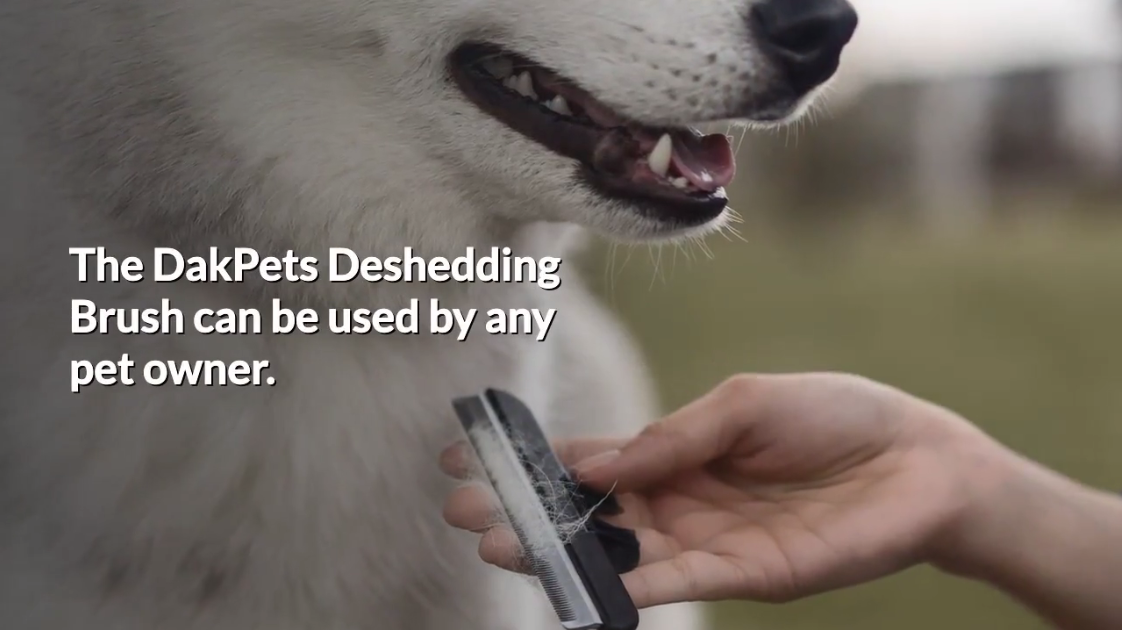 What Is A Deshedding Brush?