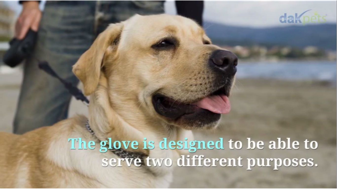 Using a Pet Grooming Glove