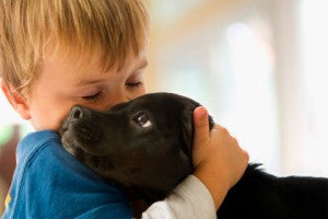 Dogs for Kids: Picking the Right Breed