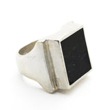 DEEP BLACK SHUNGITE ASH EARTH SIGNET RING