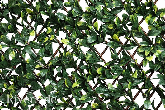 Artificial Hedging, Laurel Leaf Trellis, 100cm x 200cm - Awnings Direct