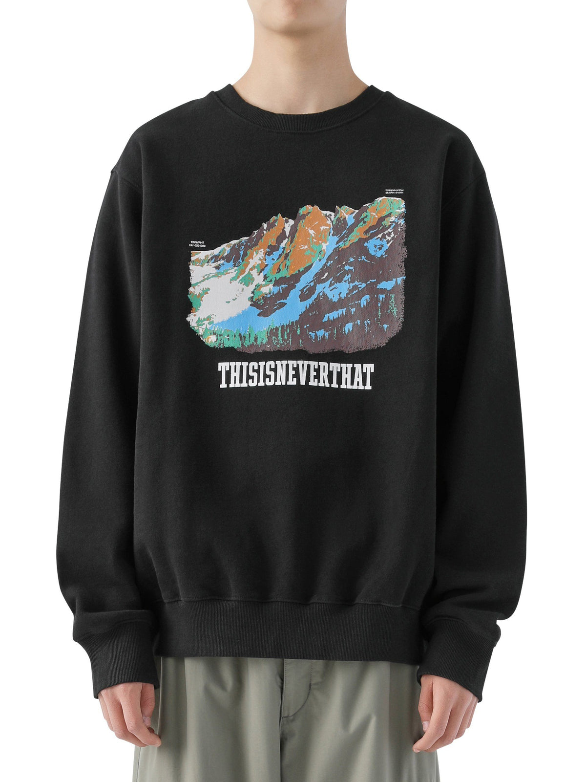 Mountain Crewneck - thisisneverthat