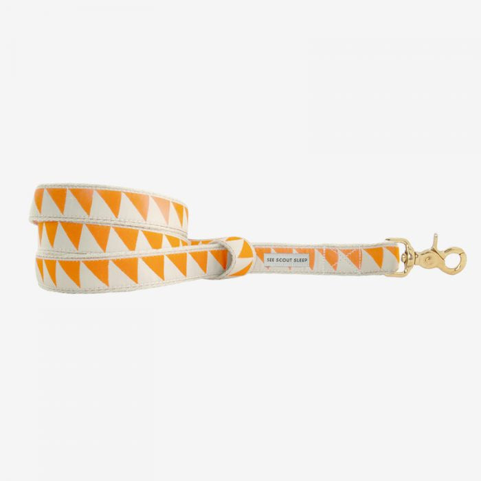 Nice Grill Tangerine & Cream Leash