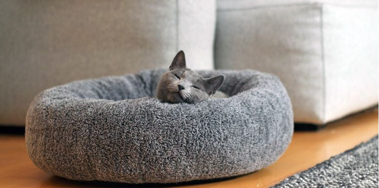 Sherpa Cat Bed