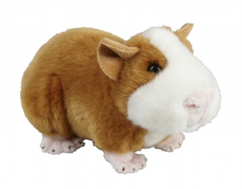 Plush Soft Toy Guinea Pig from The Suma Collection by Ravensden