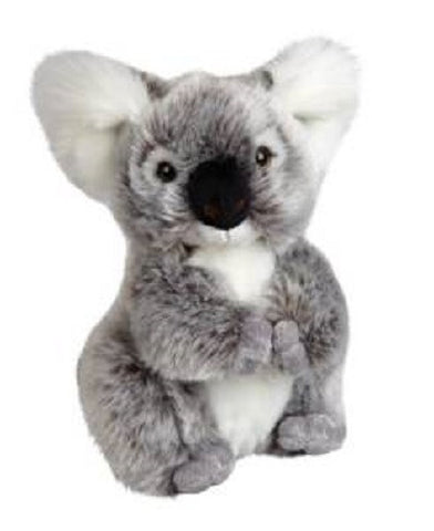 Ravensden Koala Bear from The Suma Collection 20cm