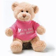 I'M The Big Sister Bear Soft Toy 28Cm By Gund