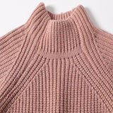 Sasha Turtleneck Sweater