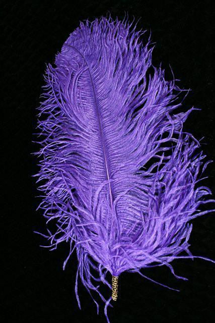 Single Plume Feather Hat Pin - Purple - Tall Toad