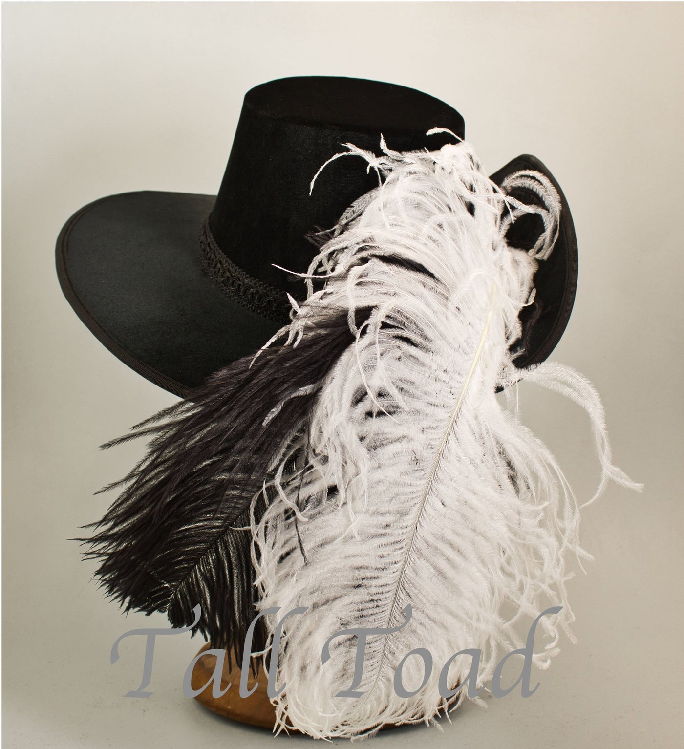 Smooth Velvet Cavalier - Black /  Black and White Feathers - Tall Toad