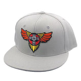 Dogtown Skateboards Wings Patch Snapback Hat