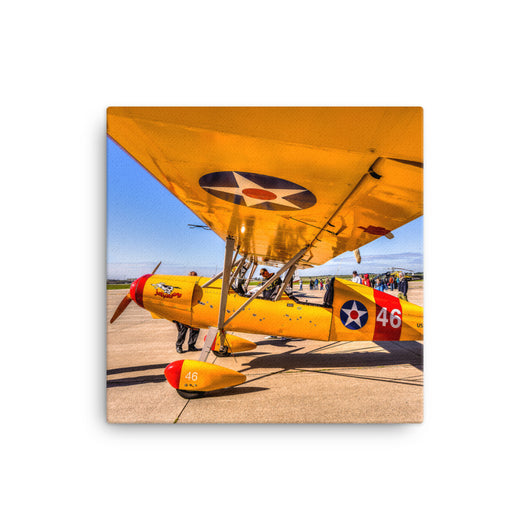Canvas Print On Golden Wings Canvas Print by Garth Fuerste Photography - TheDarkSlide