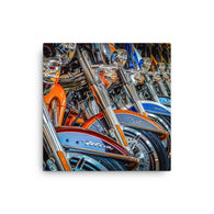 Canvas Print Hogs In A Row Canvas Print by Garth Fuerste Photography - TheDarkSlide