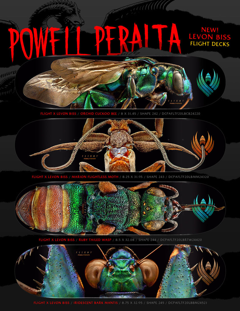 Powell Peralta x Levon Biss Cuckoo Bee Flight Skateboard Deck *Pre-Order