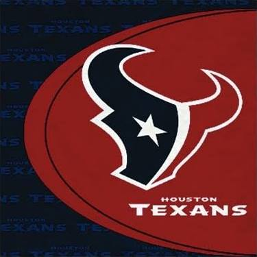 Houston Texans Lunch Napkins 16ct - NFL - Party Supplies - America Likes To Party