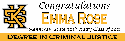 Kennesaw State University Banner B