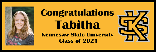 Kennesaw State University Banner D