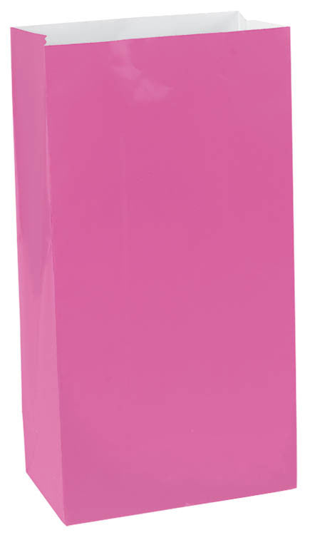 Bright Pink Mini Paper Bags 12ct - FAVOR BAGS/CONTAINERS - Party Supplies - America Likes To Party