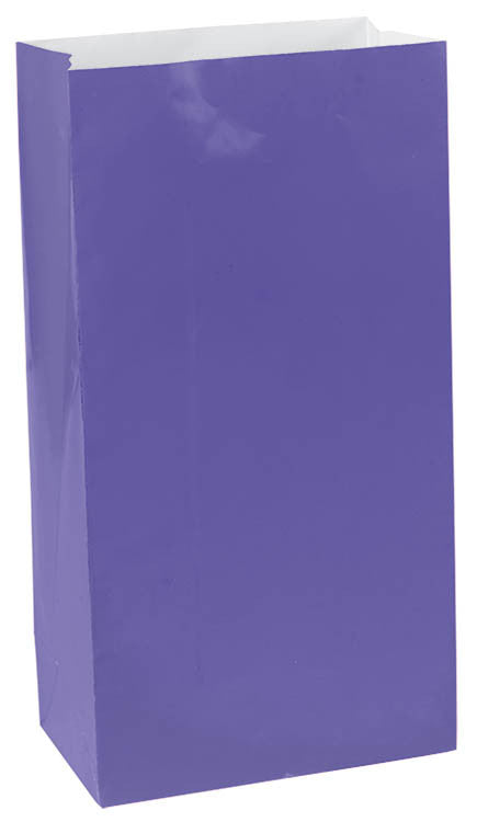 Purple Paper Bags 12ct - FAVOR BAGS/CONTAINERS - Party Supplies - America Likes To Party