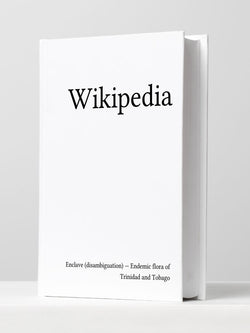 Michael Mandiberg | Encyclopedia from Print Wikipedia