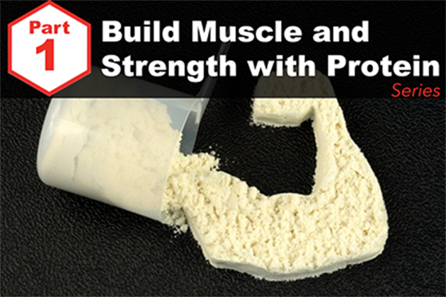 Answered: Your Most Burning Questions About Building Muscle/Strength With Protein <br>[Part 1: How Much Is Optimal?]</br>