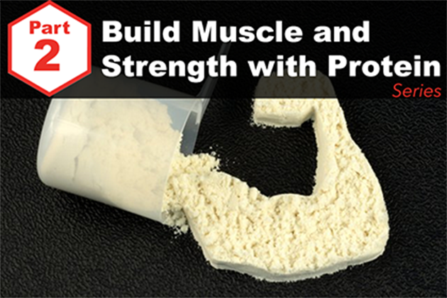 Answered: Your Most Burning Questions about Building Muscle/Strength With Protein <br>[Part 2: What To Use]</br>