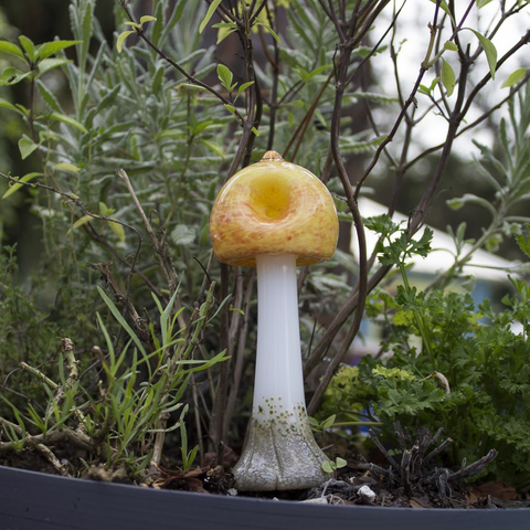 "Magic Mushroom Shaped ""Shroom"" Glass Spoon"