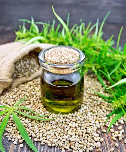CBD oil is derived from hemp non-psychoactive type of cannabis plant
